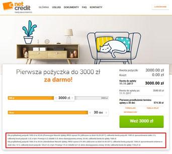 NetCredit-przykład-reprezentatywny