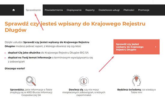 raport KRD - pobierz