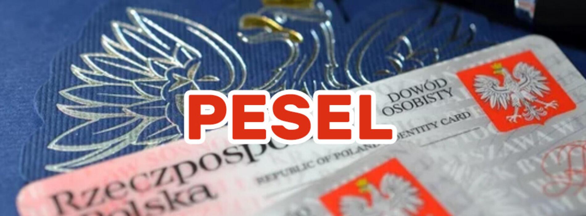PESEL – czym jest ten numer i gdzie jest potrzebny?