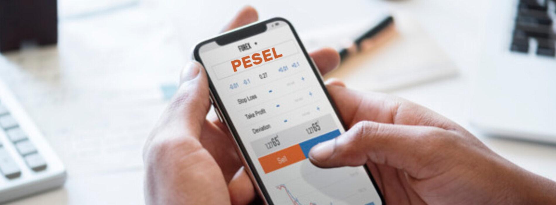Sprawdzenie i weryfikacja numeru PESEL przed wzięciem kredytu