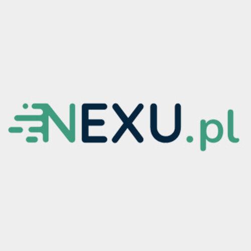 Nexu – recenzja pożyczki i opinie